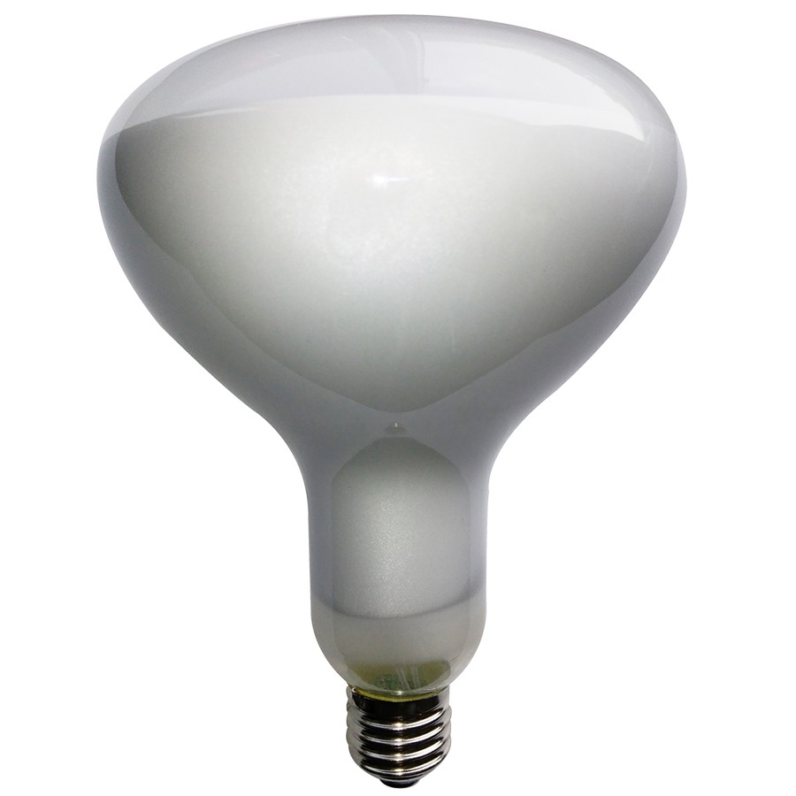 ECO R125 FILOLED DIMMABLE